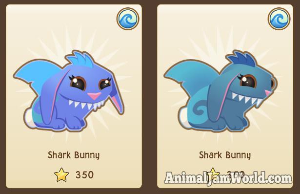 sharkbunny