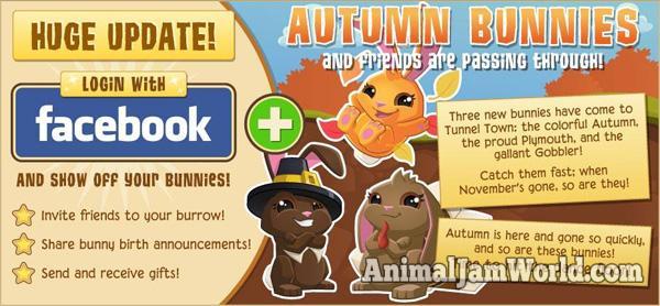tunnel-town-autumn-bunnies-2
