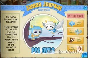 animal-jam-pet-owls