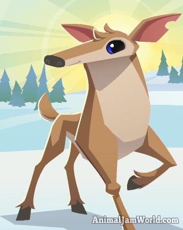 animal-jam-deer-codes-5_png