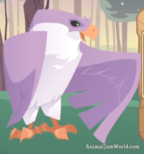 animal-jam-falcon-codes-2