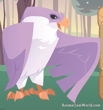 animal-jam-falcon-codes-2