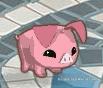 animal-jam-pig-codes-4