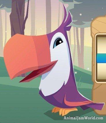 animal-jam-toucan-codes-3