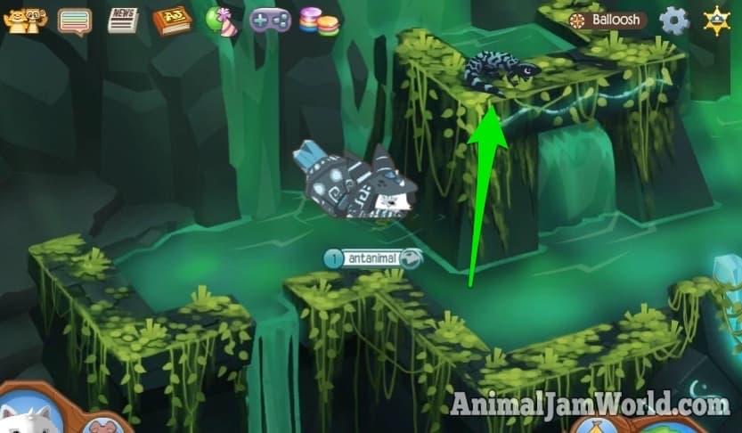 Animal Jam 1