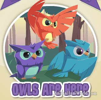 animal-jam-owls-codes-1
