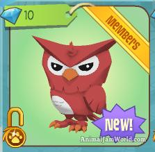 animal-jam-owls-codes-2