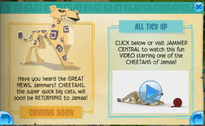 Cheetahs are Back
