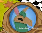 animal-jam-llama-codes-4