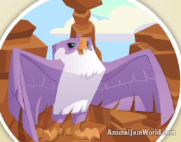 animal-jam-falcon-codes-5