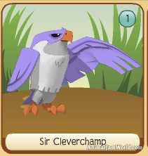 animal-jam-falcon-codes-6