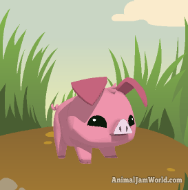 animal-jam-pig-codes-1