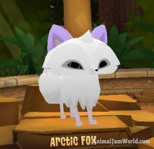 Play Wild Arctic Fox How To Get Them In Ajpw
